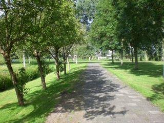 Korte Vlietpad - my favorite walk in Leiden